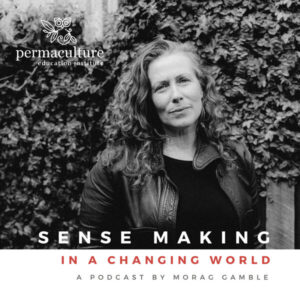 Sense-making in a changing world podcast logo